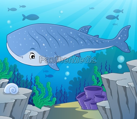whale shark theme image 2