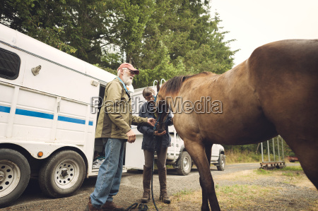 female doctor examining horse while standing