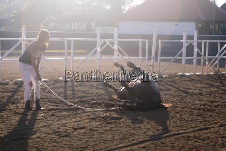 full length of woman training horse