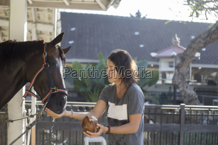 woman feeding coconut water to horse