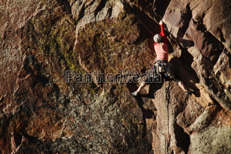 rear view of female climber climbing