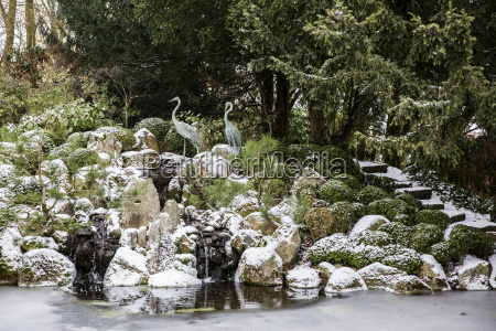 un giardino roccioso sopra una piscina