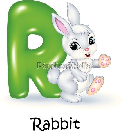 illustration des r briefes fuer kaninchen