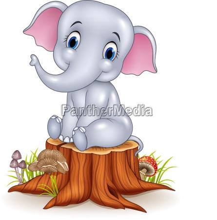 cartoon funny baby elephant sitting on