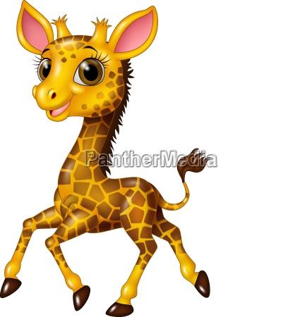 cartoon baby giraffe laeuft isoliert auf
