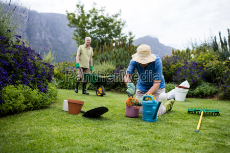 senior woman planting flower while senior
