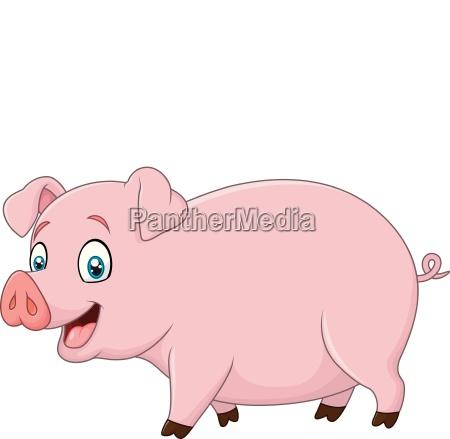 cartoon glueckliches schwein auf weissem hintergrund