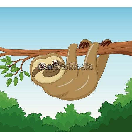 cartoon happy sloth hanging on the