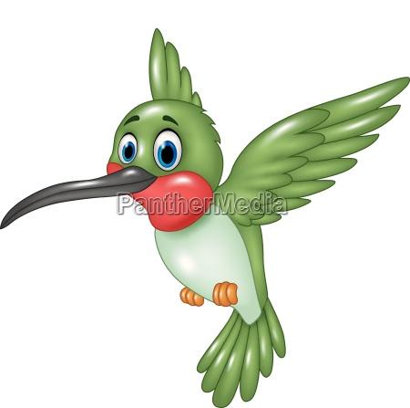 cartoon funny hummingbird flying isolated on