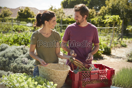 couple working on community allotment together