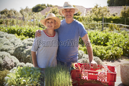 portrait of mature couple working on