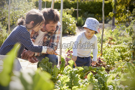 children helping father as they work
