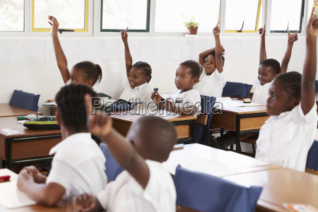 kids raising hands during a lesson