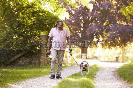senior man walking with pet bulldog