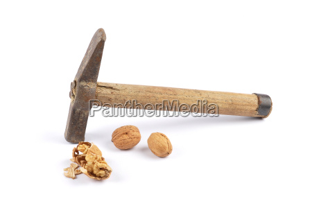 walnuts and hammer on white
