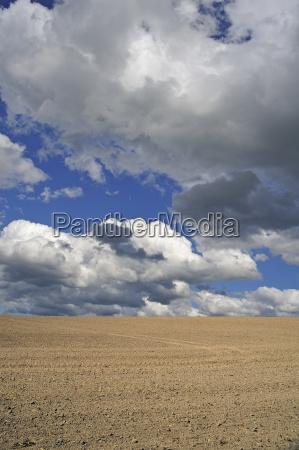 frisch eingester acker mit cumuluswolken am