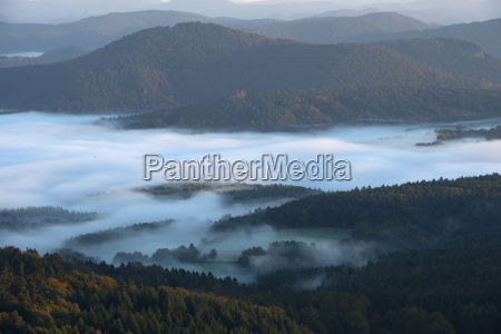 palatinate forest view from the castle