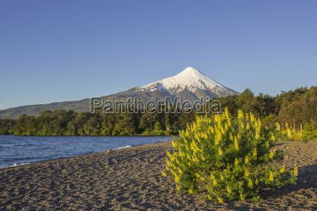 volcano osorno and shore of the