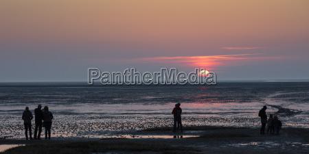 personen betrachten den sonnenuntergang nationalpark niedersaechsisches