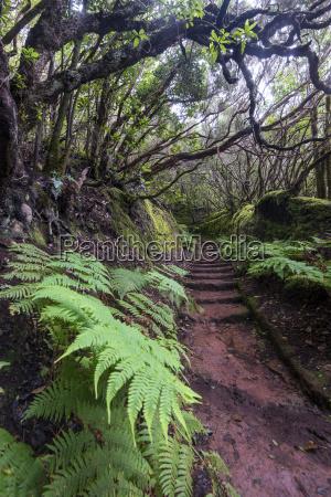 camino de las vueltas mercedeswald lorberwald