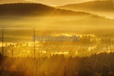 morning fog in the sumava national
