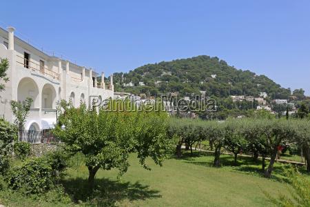 garden in capri