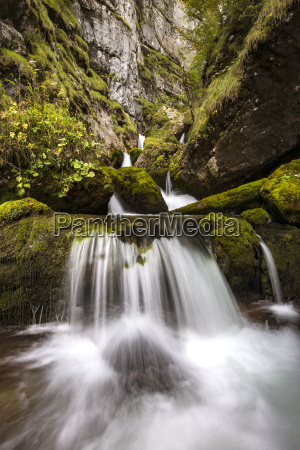 wildbach im hartelsgraben nationalpark gesause