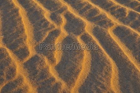 sandwellen sandstruktur im abendlicht