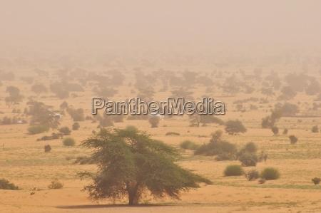 nomadenzelte bei einem sandsturm