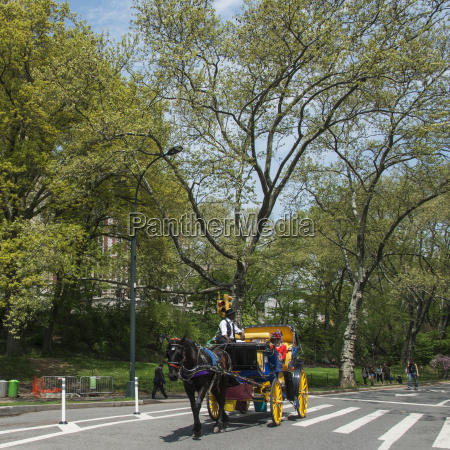 horse drawn carriage going down the