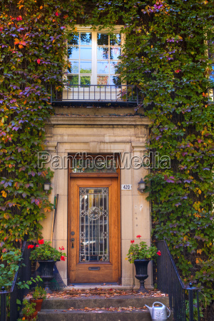 windows and doors framed with vines