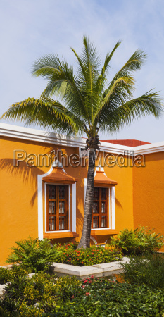 leuchtiges orangenhaus mit einem palmenbaum playa