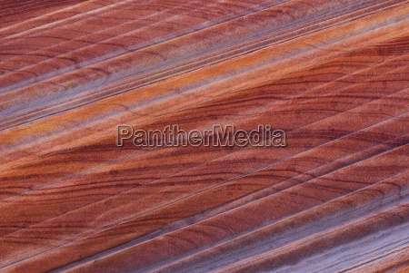 the wave coyote buttes page arizona