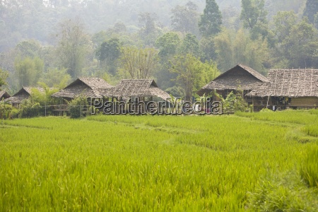tong luang village chiang mai thailand