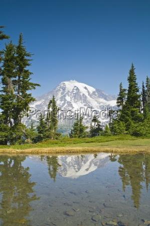 mt rainier reflected from plummer peak