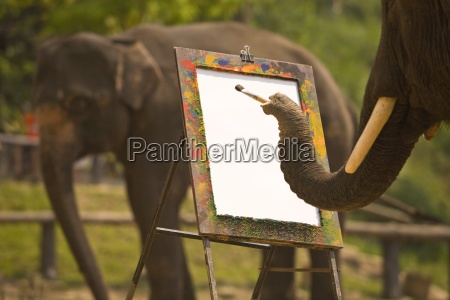 elephant painting on an easel at