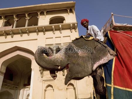 man sitting on elephant amber fort