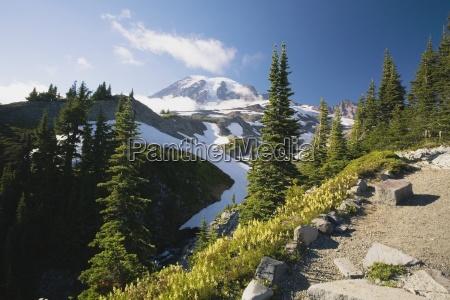 baum baeume berge winter wolke straeucher