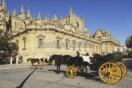 seville andalusia spain horses and carriages