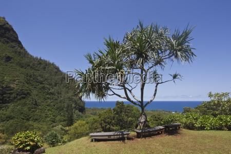 kauai hawaii usa offene parkanlage des