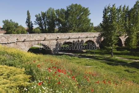 the roman bridge salamanca salamanca province