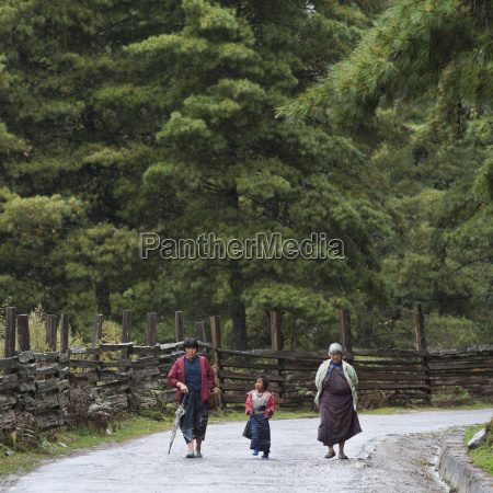 people walking along rural road phobjikha