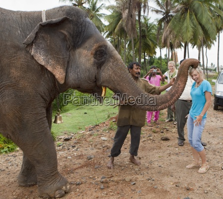 a traditional holy elephant blessing a
