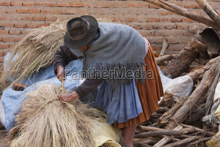 hay vendor sucre chuquisaca department bolivia