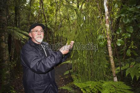 a man erforscht die lokale flora