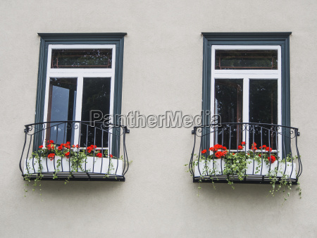 a pair of windows with matching