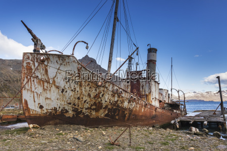relic ships at the old whaling