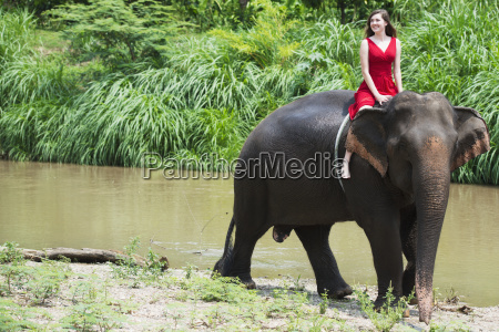 girl riding an elephant chiang mai