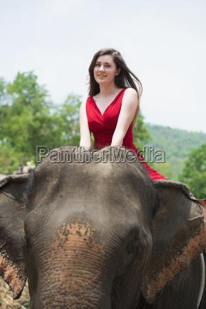girl riding an elephant chiang mai