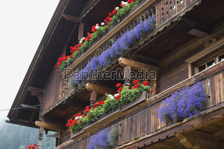 wooden alpine balconies with colourful flower